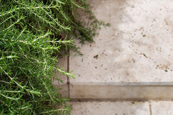 path-design-studios_600x800_hawthorn-garden_22