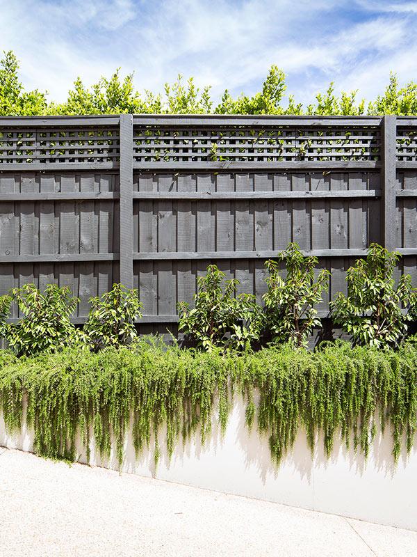 path-design-studios_landscape-design_600x800_hawthorn-garden_002