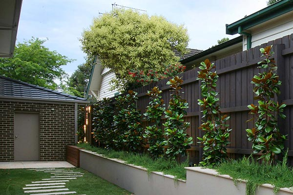 path-design-studio_landscape-design_ivanhoe-house-garden_06_600x400