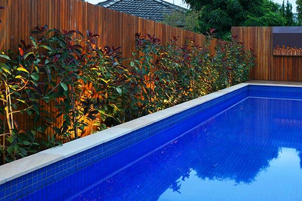 path-design-studio_landscape-design_ivanhoe-house-garden_09_600x400