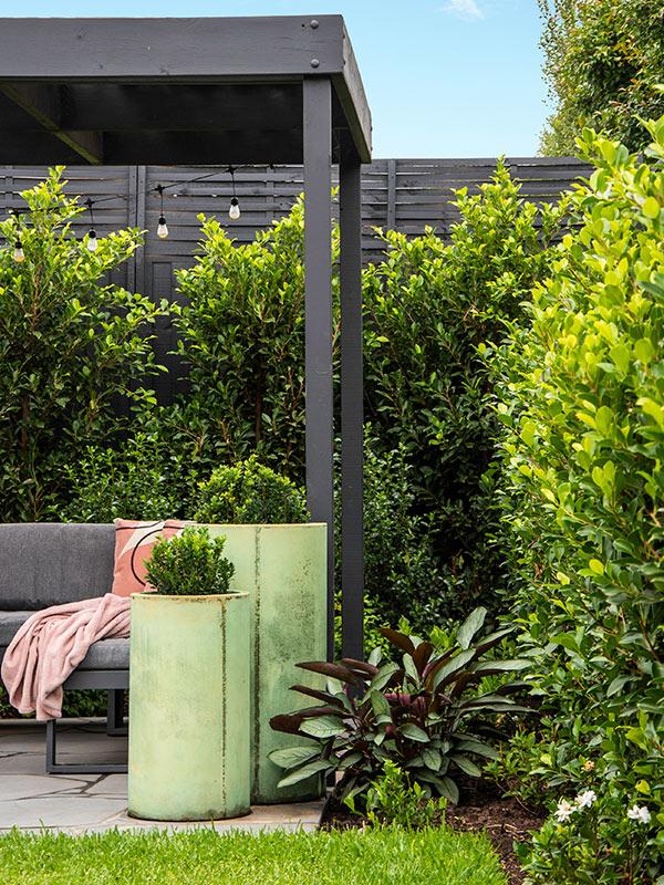 path-design-studio_bentleigh-garden_landscape-design_02_600x800