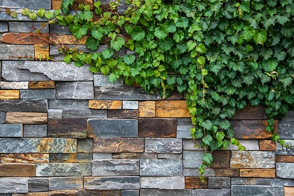 path-design-studio_bentleigh-garden_landscape-design_08_600x800