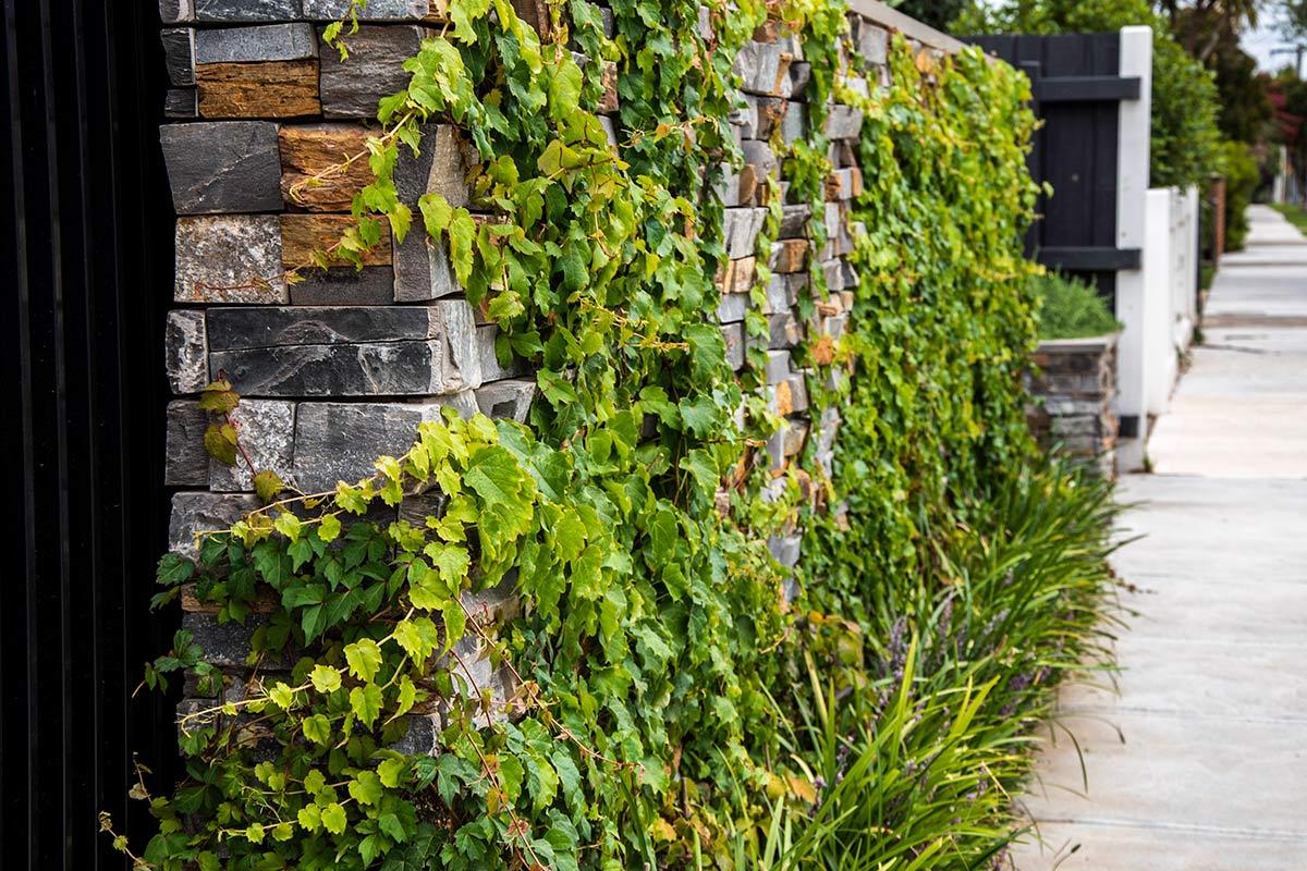 path-design-studio_bentleigh-garden_landscape-design_11_1200x800