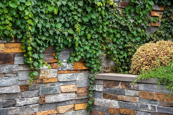 path-design-studio_bentleigh-garden_landscape-design_12_600x800