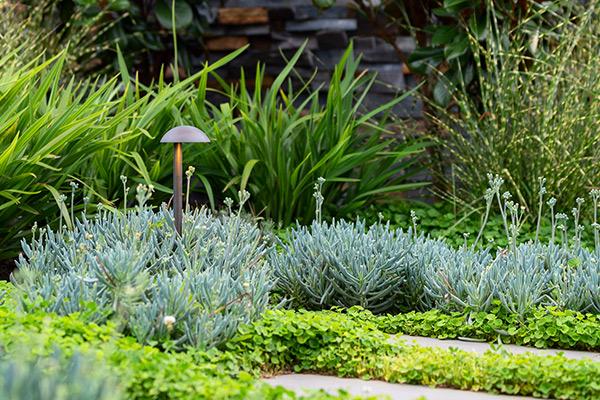path-design-studio_bentleigh-east-garden_landscape-design_17_600x800