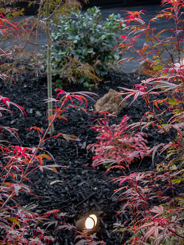 path-design-studio landscape-design corinella-garden 15_600x800